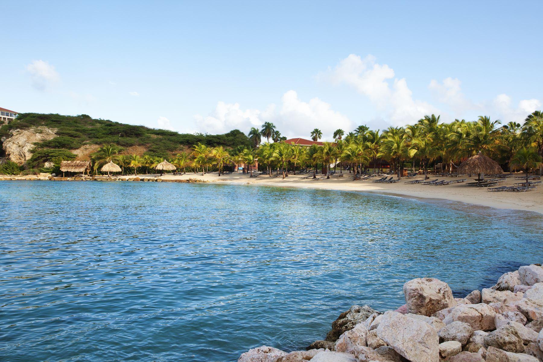 Curacao Palmbomen Strand