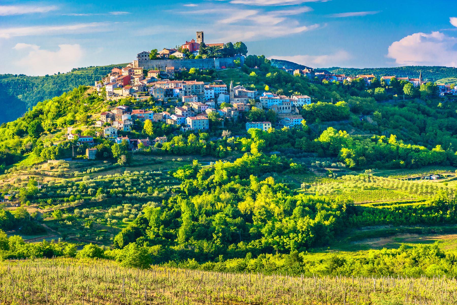 Kroatie Natuur Motovun