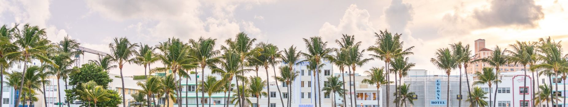 Fly Drive Miami