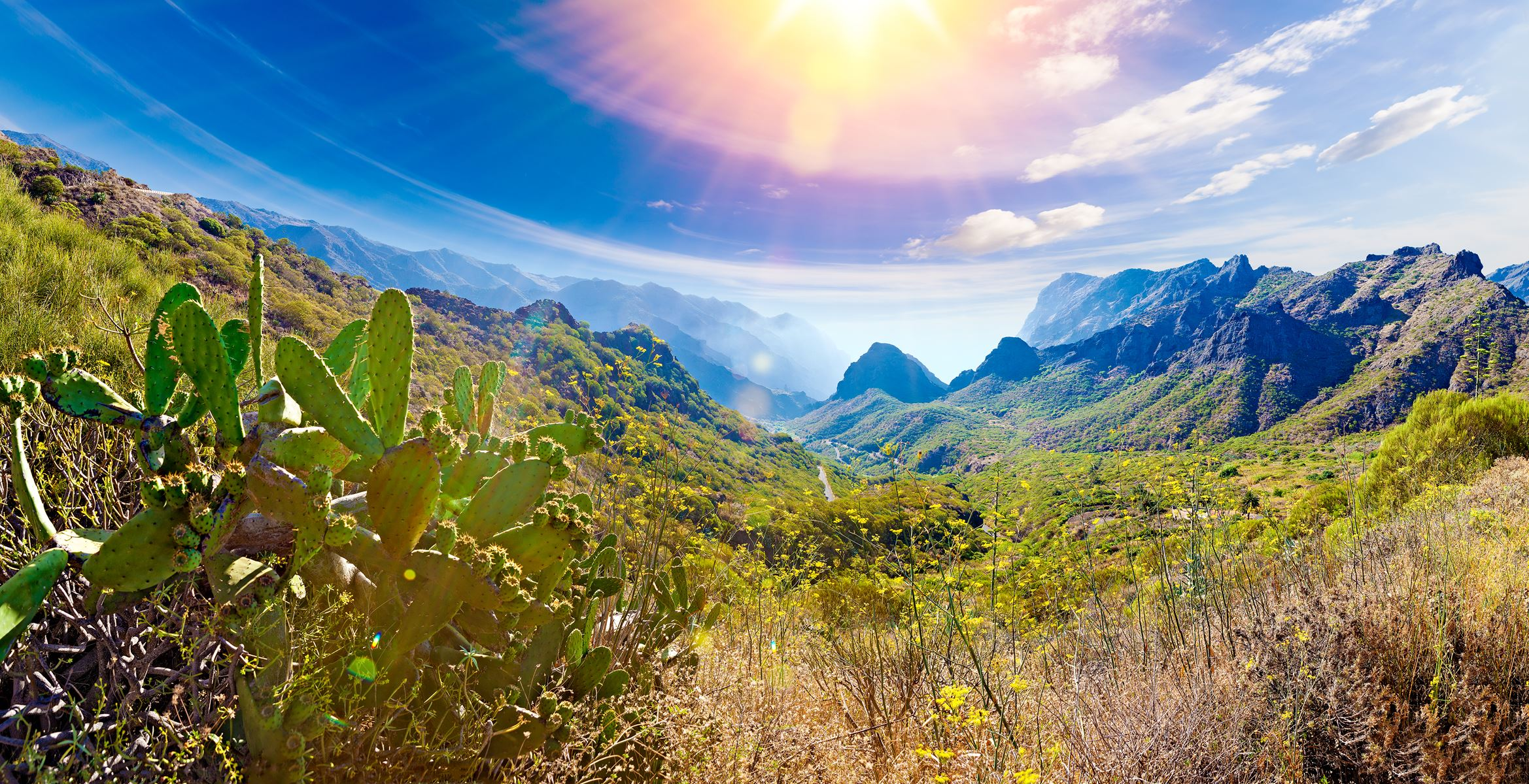 Spanje Tenerife Natuur