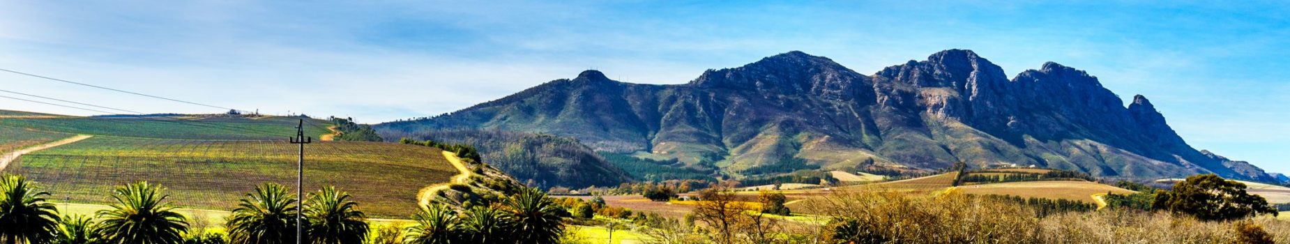 Fly Drive Zuid-Afrika