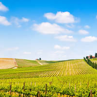9-daagse fly-drive Gastronomisch Umbrië & Toscane