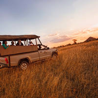 10/11-daagse autorondreis - inclusief vliegreis Ultimate Safari Experience (Speciaal Sefapane Arran